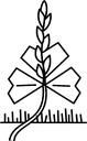 Logo AGGF